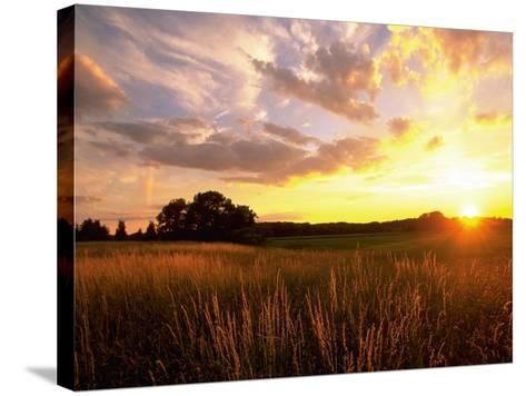 Sunset Over Salt Marsh, Essex, MA-Kindra Clineff-Stretched Canvas Print