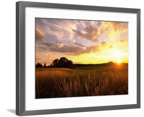 Sunset Over Salt Marsh, Essex, MA-Kindra Clineff-Framed Art Print
