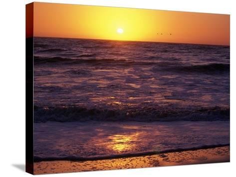 Ocean Beach at Sunset, San Francisco, CA-Daniel McGarrah-Stretched Canvas Print