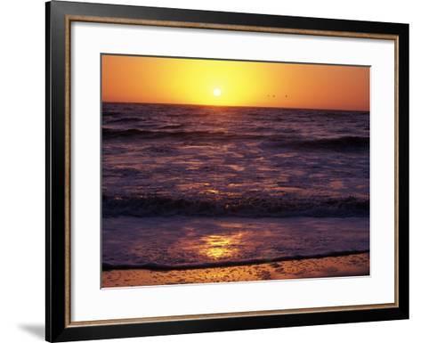 Ocean Beach at Sunset, San Francisco, CA-Daniel McGarrah-Framed Art Print
