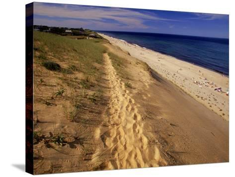 Bluff Above Maguire Landing, Cape Cod, MA-Jeff Greenberg-Stretched Canvas Print