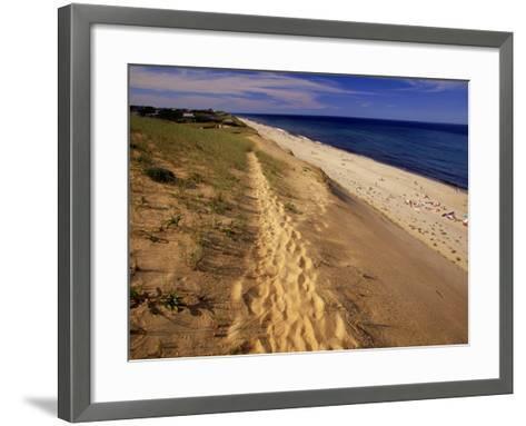 Bluff Above Maguire Landing, Cape Cod, MA-Jeff Greenberg-Framed Art Print