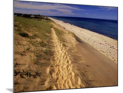 Bluff Above Maguire Landing, Cape Cod, MA-Jeff Greenberg-Mounted Photographic Print