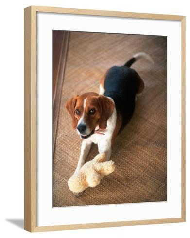 Beagle Dog with His Stuffed Animal-Lonnie Duka-Framed Art Print