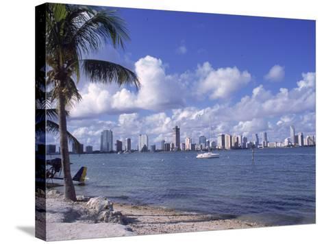 Miami Skyline, FL-Cheyenne Rouse-Stretched Canvas Print