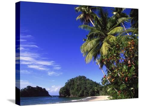 Paria Beach, Trinidad-Timothy O'Keefe-Stretched Canvas Print