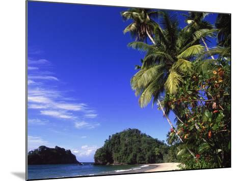 Paria Beach, Trinidad-Timothy O'Keefe-Mounted Photographic Print
