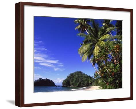 Paria Beach, Trinidad-Timothy O'Keefe-Framed Art Print