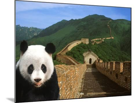 Panda and Great Wall of China-Bill Bachmann-Mounted Photographic Print