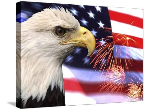 Eagle, Firework, Patriotism in the USA-Bill Bachmann-Stretched Canvas Print