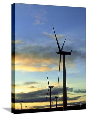 Wind Turbines at Sunset, Caithness, Scotland-Iain Sarjeant-Stretched Canvas Print