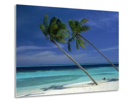Palm Trees on Tropical Beach, Maldives-Frank Chmura-Metal Print
