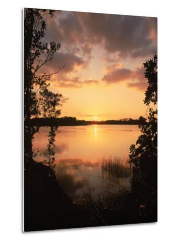 Sunset at Paurotis Pond, Everglades National Park, FL-David Davis-Metal Print