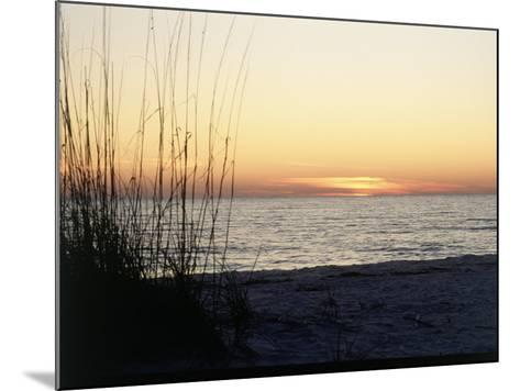 Sunset on Sanibel Island, Gulf Coast of FL-David Davis-Mounted Photographic Print