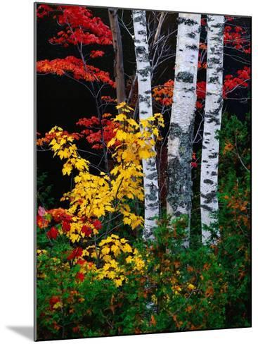 Fall Color, Old Forge Area, Adirondack Mountains, NY-Jim Schwabel-Mounted Photographic Print