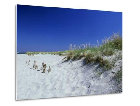 Sand Dunes and Marram Grass, West Sussex, UK-Ian West-Metal Print