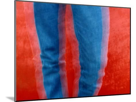Vibrant Blue Jeans against a Red Background-Raymond Gehman-Mounted Photographic Print
