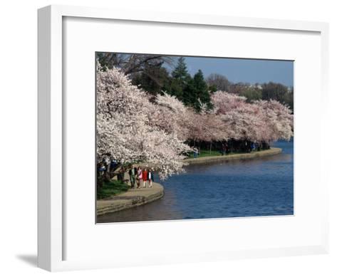 Cherry Blossom Festival on the Tidal Basin-Richard Nowitz-Framed Art Print