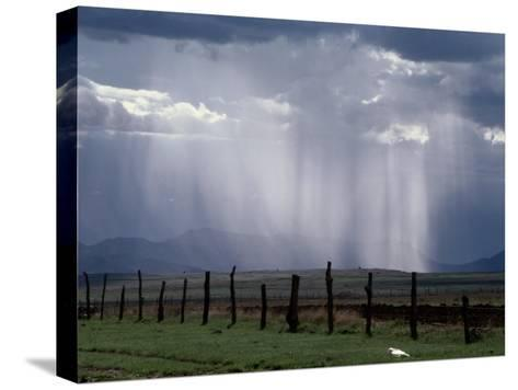 Veils of Rain Stream from Sunlit Clouds over Farmland-George Grall-Stretched Canvas Print