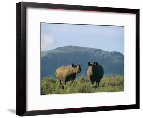 A Black Rhinoceros Cow and Her Calf-Chris Johns-Framed Art Print