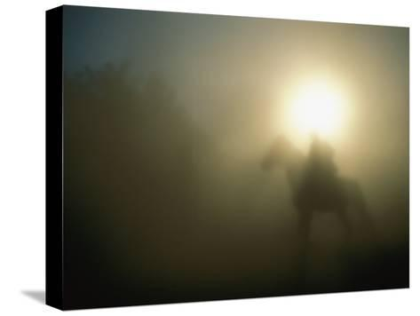 A Person on a Horse is Silhouetted in the Fog-Sisse Brimberg-Stretched Canvas Print
