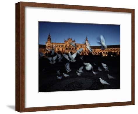 Pigeons in a Square in Seville-Steve Winter-Framed Art Print