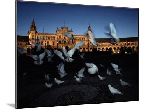Pigeons in a Square in Seville-Steve Winter-Mounted Photographic Print