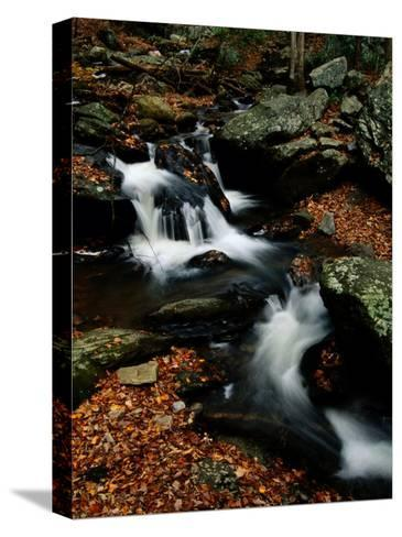 Scenic View of a Waterfall on Smith Creek-Raymond Gehman-Stretched Canvas Print