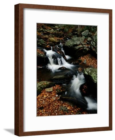 Scenic View of a Waterfall on Smith Creek-Raymond Gehman-Framed Art Print