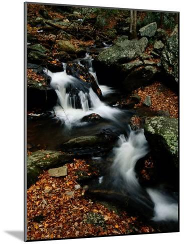 Scenic View of a Waterfall on Smith Creek-Raymond Gehman-Mounted Photographic Print
