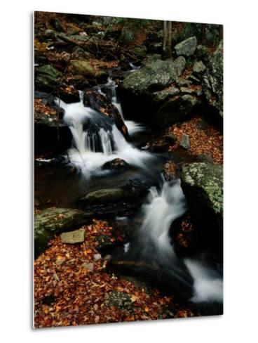 Scenic View of a Waterfall on Smith Creek-Raymond Gehman-Metal Print