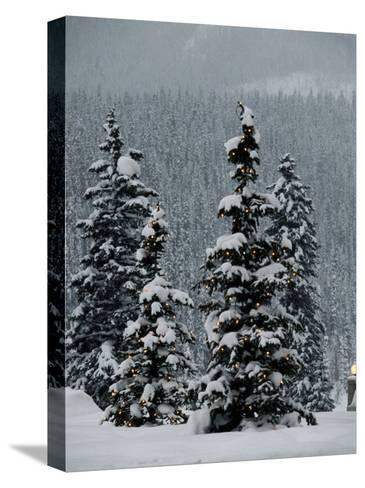 Fresh Snowfall at the Chateau Lake Louise-Richard Nowitz-Stretched Canvas Print