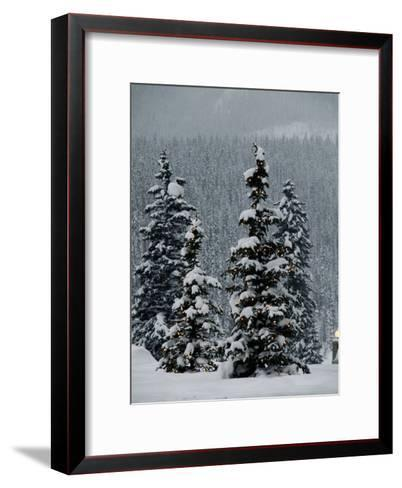 Fresh Snowfall at the Chateau Lake Louise-Richard Nowitz-Framed Art Print