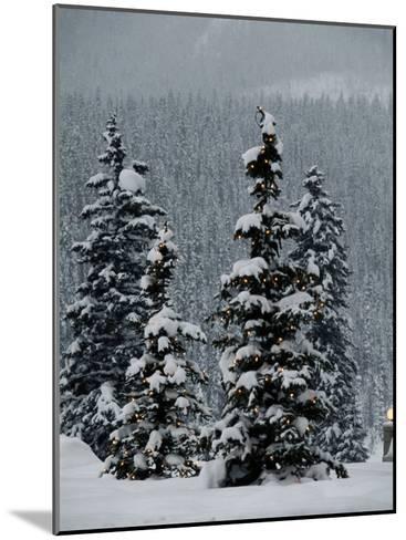 Fresh Snowfall at the Chateau Lake Louise-Richard Nowitz-Mounted Photographic Print
