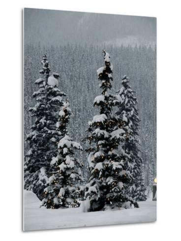 Fresh Snowfall at the Chateau Lake Louise-Richard Nowitz-Metal Print