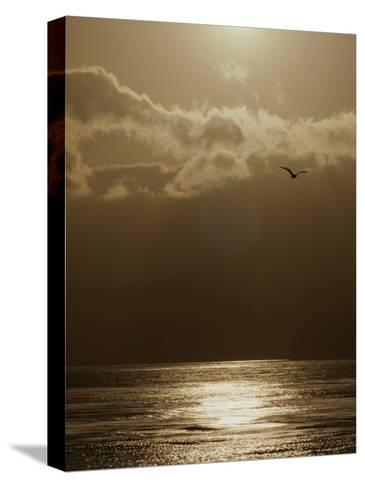 The Sun Sets over the Pacific Ocean off the Coast of Shell Beach-Marc Moritsch-Stretched Canvas Print