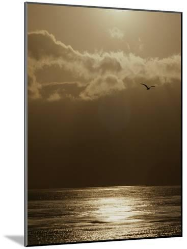 The Sun Sets over the Pacific Ocean off the Coast of Shell Beach-Marc Moritsch-Mounted Photographic Print