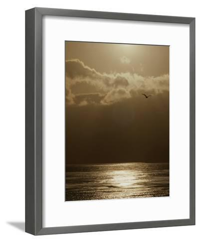 The Sun Sets over the Pacific Ocean off the Coast of Shell Beach-Marc Moritsch-Framed Art Print