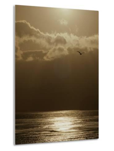 The Sun Sets over the Pacific Ocean off the Coast of Shell Beach-Marc Moritsch-Metal Print