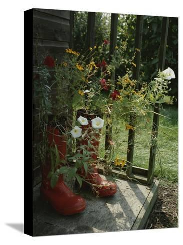 Flowers Bloom from an Unlikely Place-A Pair of Red Boots on a Porch-Jonathan Blair-Stretched Canvas Print