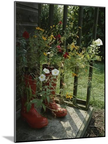Flowers Bloom from an Unlikely Place-A Pair of Red Boots on a Porch-Jonathan Blair-Mounted Photographic Print