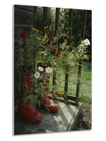 Flowers Bloom from an Unlikely Place-A Pair of Red Boots on a Porch-Jonathan Blair-Metal Print