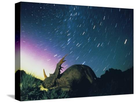 Northern Lights and Meteor Trails over a Replica of a Styracosaurus-Jonathan Blair-Stretched Canvas Print