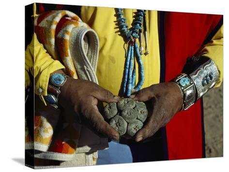 Close View of Peyote Cacti (Lophophorus Williamsii) Being Held by a Native American Medicine Man-Ira Block-Stretched Canvas Print