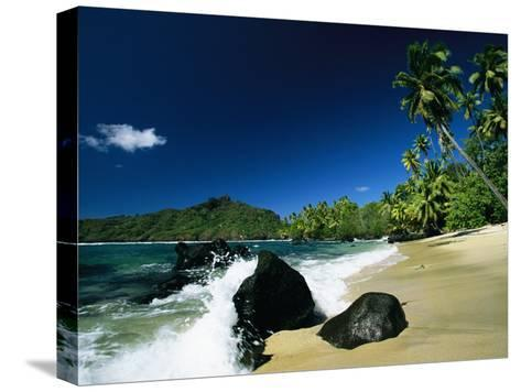 Surf Surging onto a Palm Tree-Lined Beach-Tim Laman-Stretched Canvas Print