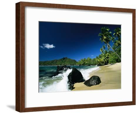 Surf Surging onto a Palm Tree-Lined Beach-Tim Laman-Framed Art Print
