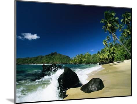 Surf Surging onto a Palm Tree-Lined Beach-Tim Laman-Mounted Photographic Print