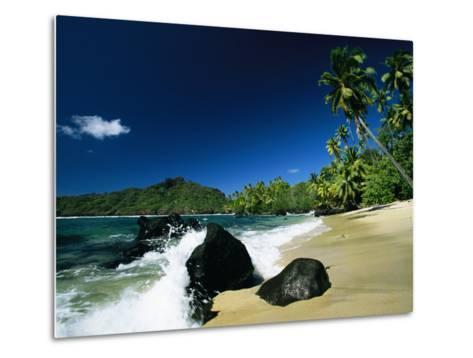 Surf Surging onto a Palm Tree-Lined Beach-Tim Laman-Metal Print