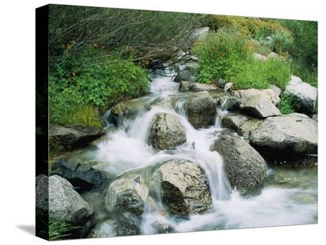 A Creek Flows over Granite Rocks in the Sierra Nevada Mountains-Marc Moritsch-Stretched Canvas Print