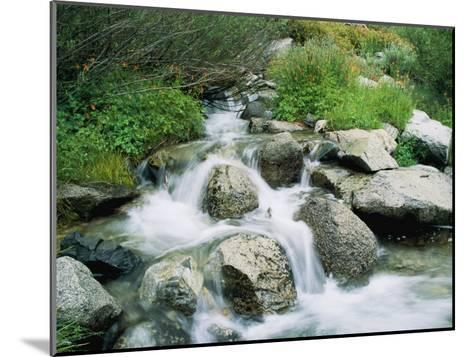 A Creek Flows over Granite Rocks in the Sierra Nevada Mountains-Marc Moritsch-Mounted Photographic Print